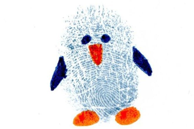Fingerprint penguin picture