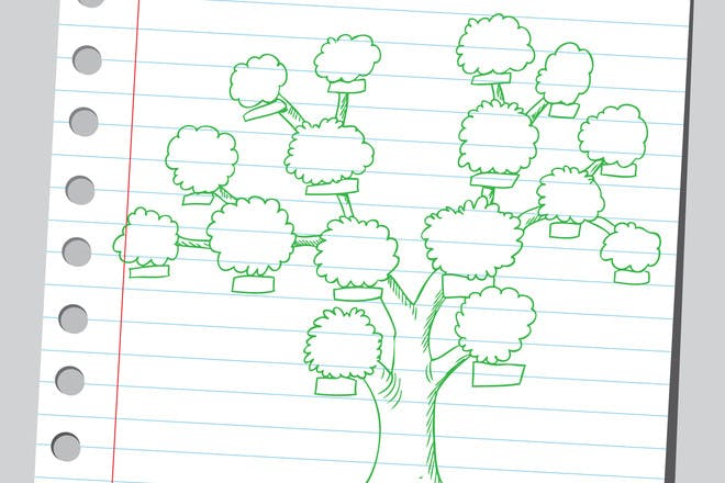 37. Draw your family tree