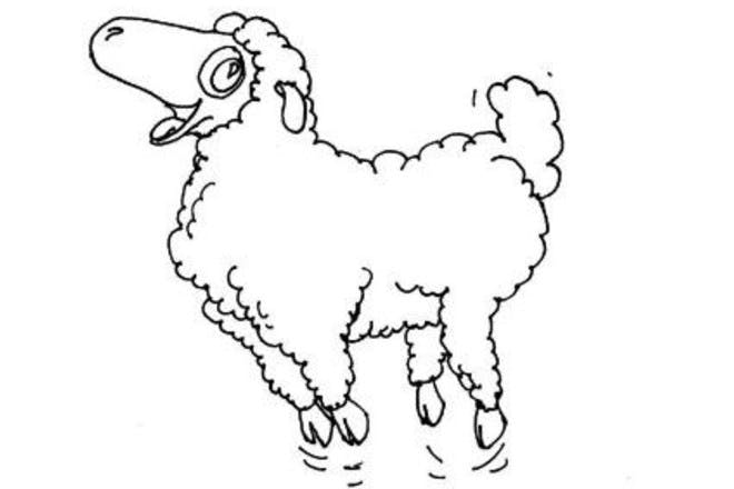 31. Bouncing sheep picture