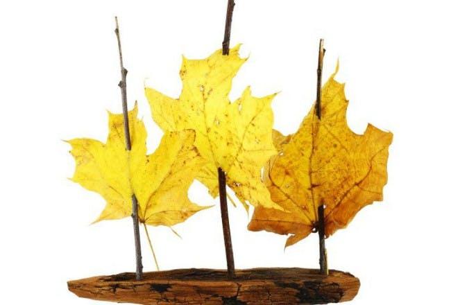 autumn leaf boats