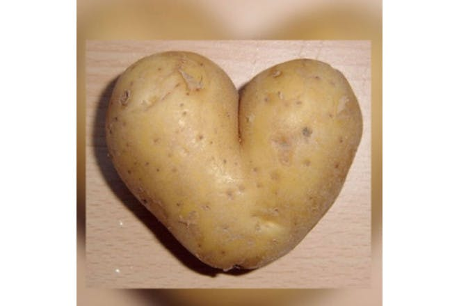 Heart potatop