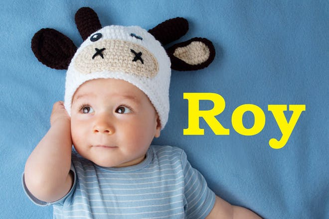45. Roy