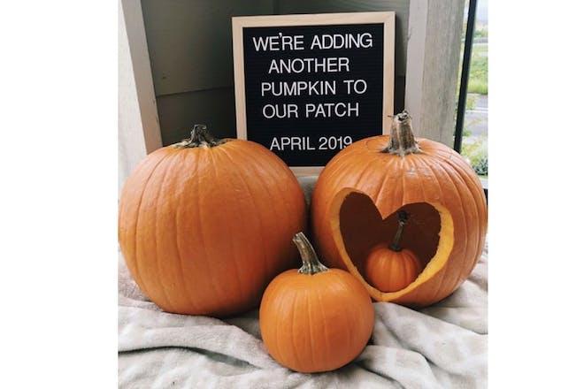 Pumpkin pregnancy announcement