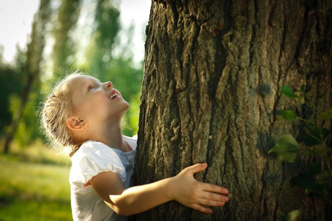 little girl holding onto a tree trunk