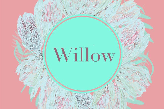 13. Willow