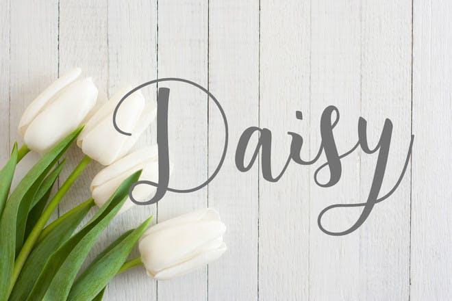 20. Daisy