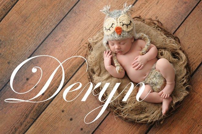 24. Deryn