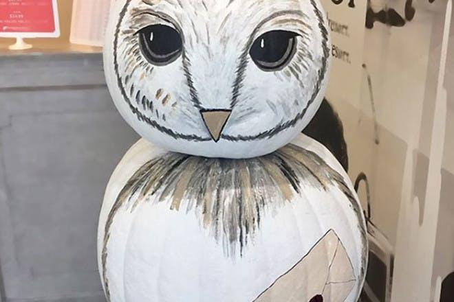 Hedwig pumpkin