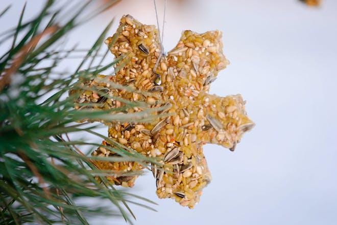 Snowflake shaped bird feed
