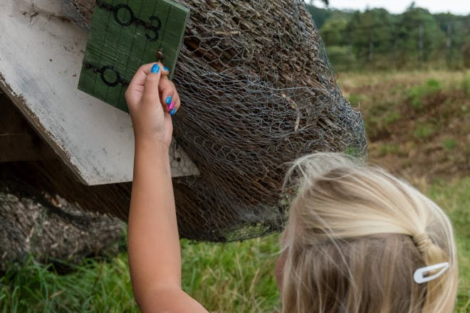 8. Spot fairy doors at Greys Court NT, Oxfordshire