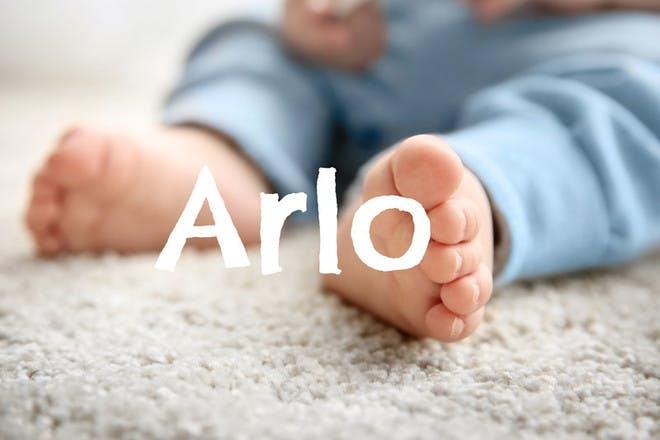 3. Arlo