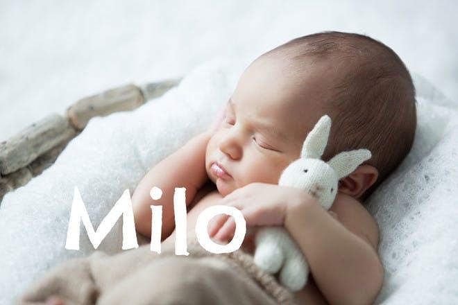 5. Milo