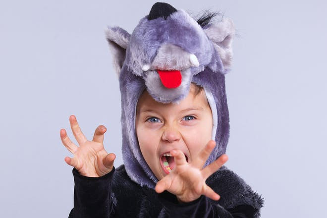 Young child roaring and dressed in a furry wolf costume
