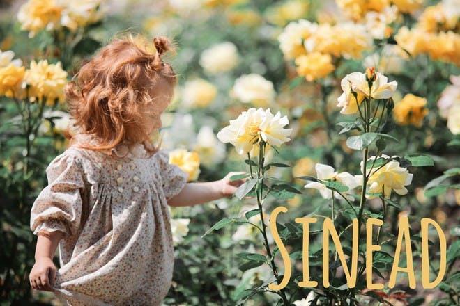 19. Sinead