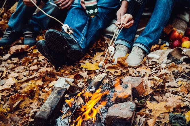 bonfire and smores in woods