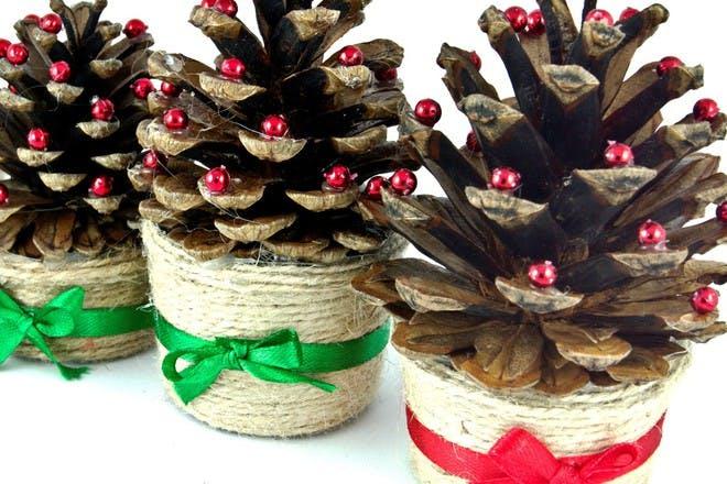 pine cone trees