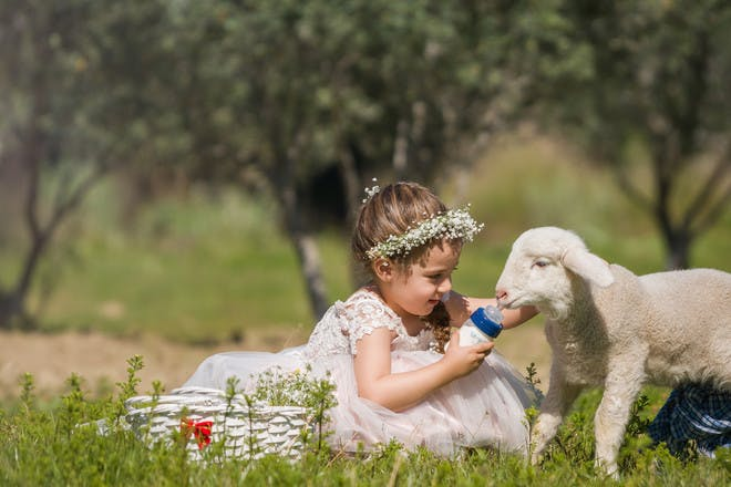 24 of the best farm parks for kids