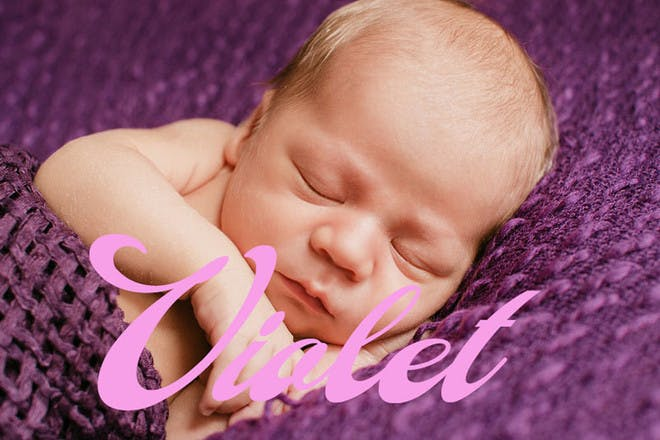 2. Violet