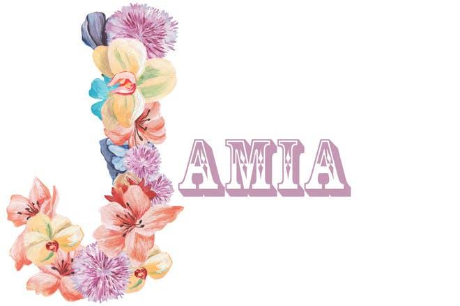 Baby name Jamia