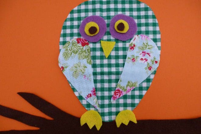 colourful owl picture