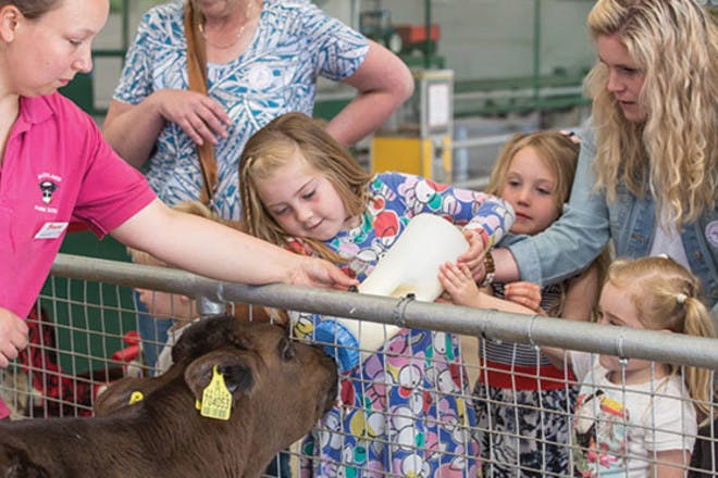 22. DairyLand Farm World, Cornwall
