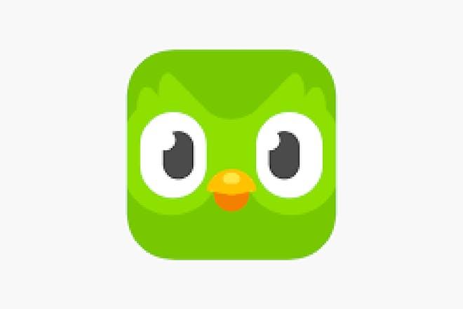 Duolingo logo of a green owl