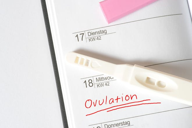 Ovulation written in diary and ovulation stick