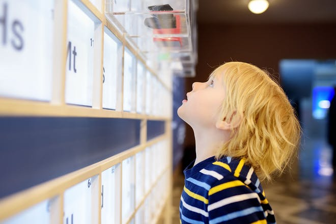 little boy looking up at museum exhibit
