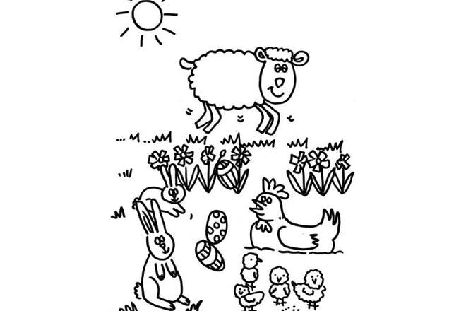 Sheep and friends