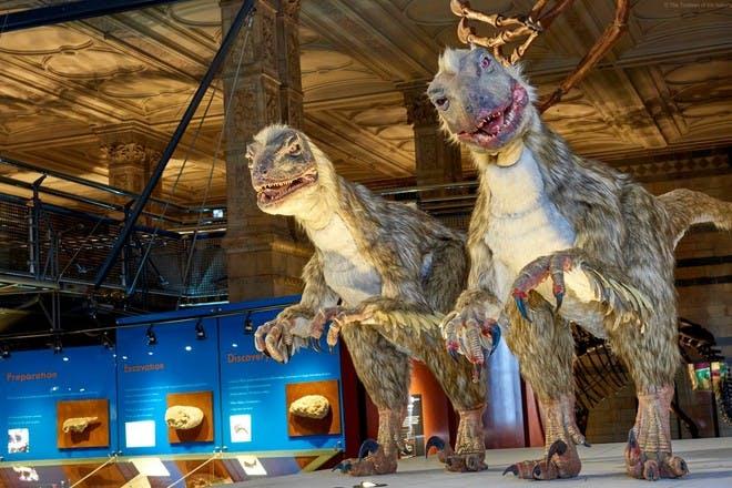 Dinosaurs in museum