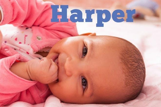 17. Harper