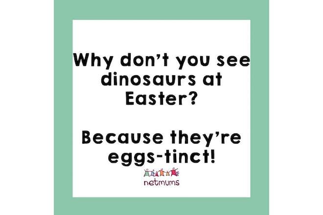 玛丽:你为什么不去看恐龙?因为他们是个白痴