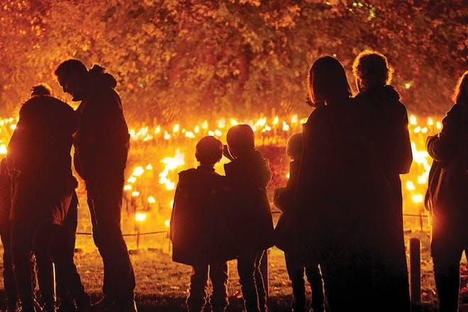 The sculptural Fire Garden at Belton House
