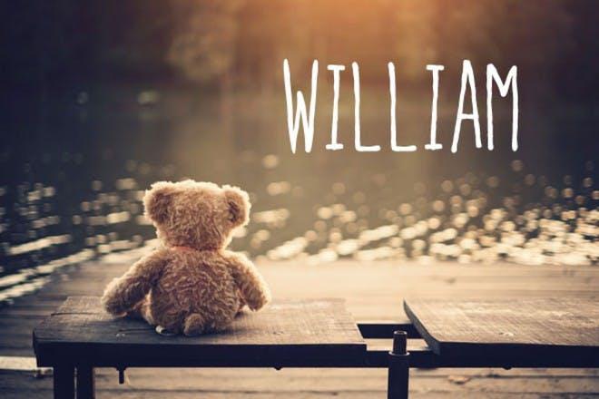 泰迪熊在长凳上