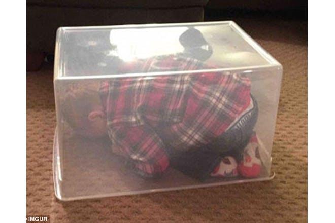 child hiding in transparent tub