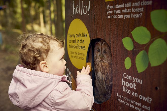 Young girl looking at sign on Gruffalo trail