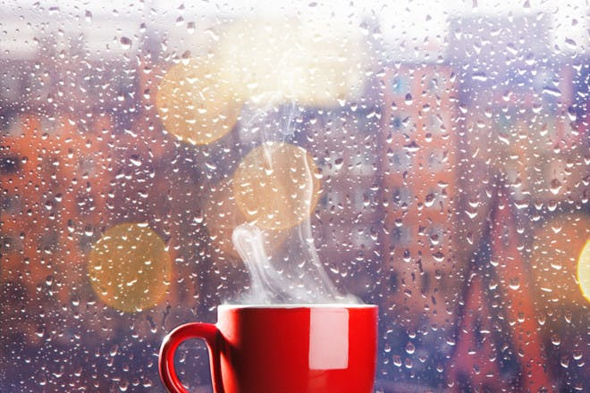 hot cup of tea in front of rainy window