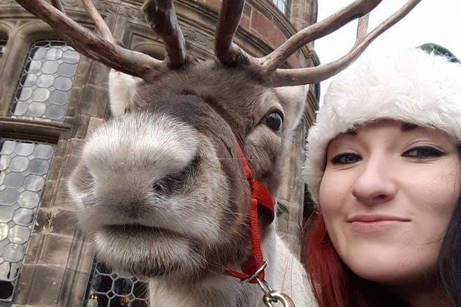 Reindeer Lodge, Black Meadows Farm