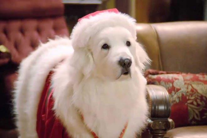 Santa Paws movie still