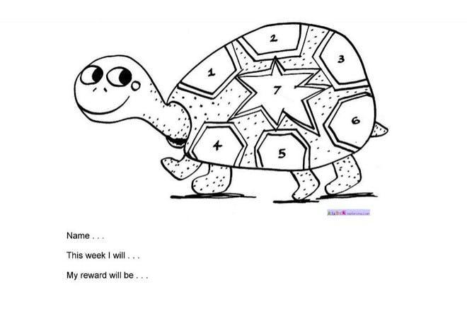 Tortoise reward chart