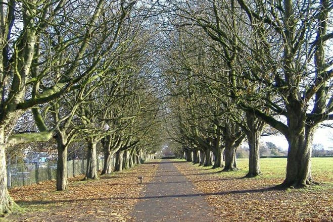 Hamilton Gault Park, Somerset