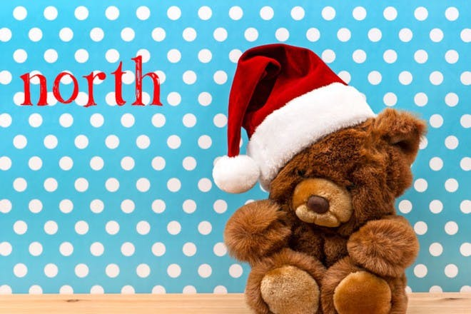 teddy bear in christmas hat