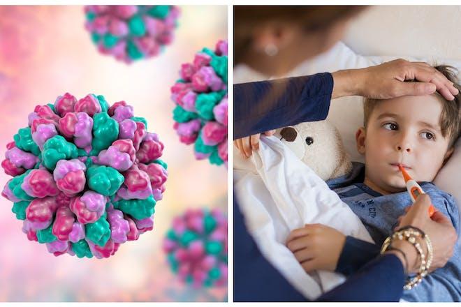Norovirus / child ill in bed