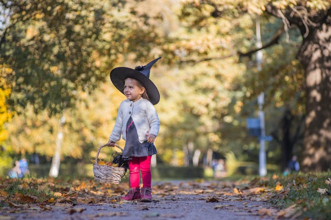 A toddler dressed in a witch's hat walks down a path through the woods