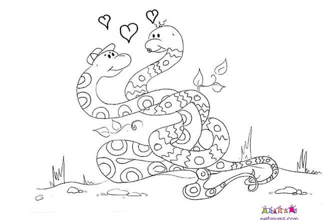 Snakes in love Valentine's card