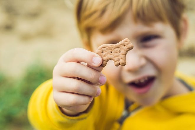 Toddler holding animal biscuit to the camera outside