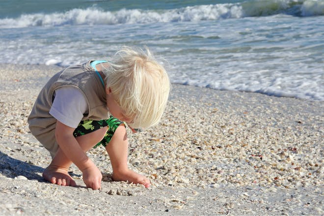 little boy collecting shells on the beach