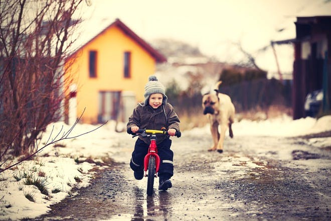 little boy cycling in snow with dog