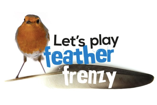 Robin and a feather next to the words let's play feather frenzy