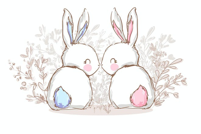 Two cute bunny rabbits